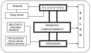 Modelo biopsicosocial de la salud